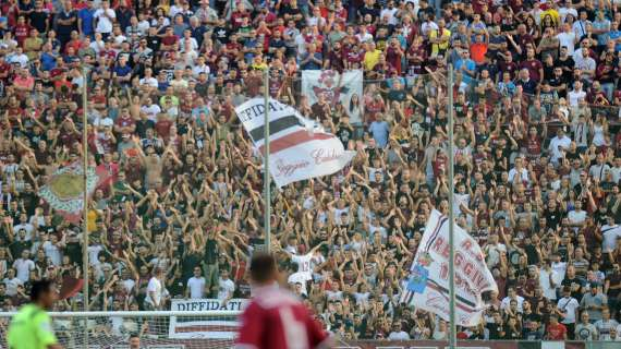 Reggina, la classifica: il divario dalla terz'ultima, amaranto a +10